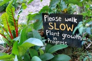 Grow, Educate, Share